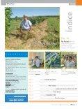Paraná: uma citricultura de respeito ao solo - GTACC - Page 3