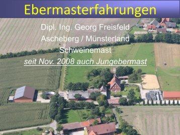 Vortrag Freisfeld Jungebermast - Welche Erfahrungen macht die ...