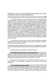 Pleno de 5 de Noviembre de 2009 - Ayuntamiento de Palencia