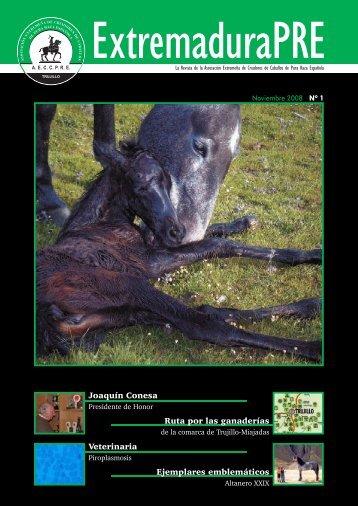 Nº 01 Noviembre 2008 - AECCPRE