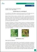 Guia Viña - AgroCabildo - Page 5