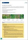 Guia Viña - AgroCabildo - Page 6