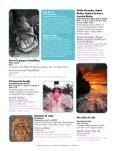 Lanzarote - Mass Cultura - Page 6