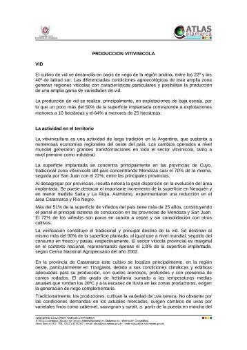 PRODUCCION VITIVINICOLA VID El cultivo de vid se desarrolla en ...