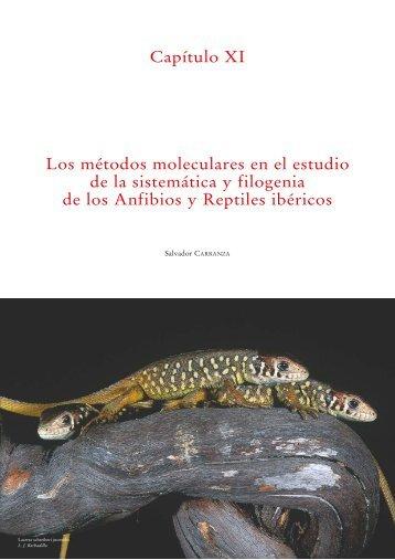 Los métodos moleculares en el estudio de la sistemática y filogenia ...