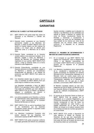 CAPITULO 6 GARANTIAS - Meff