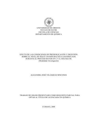 Elementos constitutivos del informe de trabajo de grado