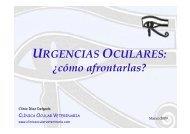 Urgencias Oculares - Clinica Ocular Veterinaria