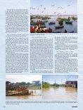 El Niño. Monstruo marino - Instituto Geofísico del Perú - Page 5