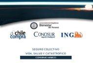 Informativo Seguro Colectivo ING