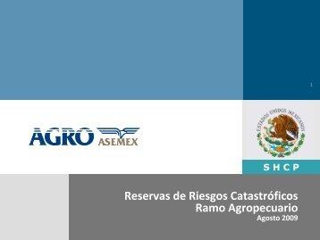 Reservas de Riesgos Catastróficos R A i Ramo Agropecuario