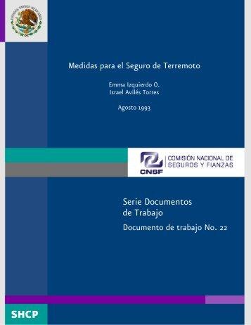 Serie Documentos de Trabajo - Cnsf