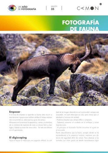 FOTOGRAFÍA DE FAUNA - Camon