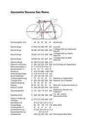 Geometrie Stevens San Remo - Radsport Smit