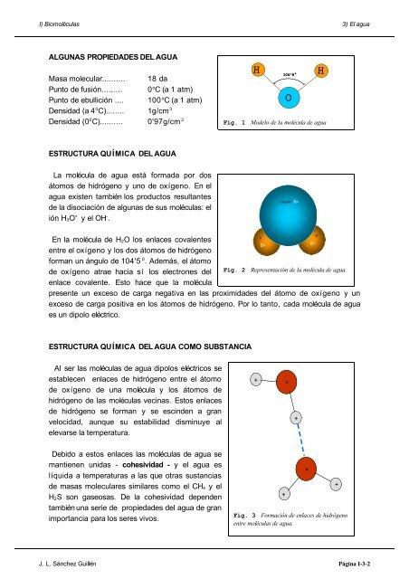 I Biomoléculas 3 El Ag