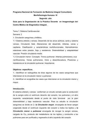Tema I. Semana 2. Guía para la Organización de la Práctica ...