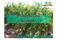 Proyecto cero Granado - IVIA