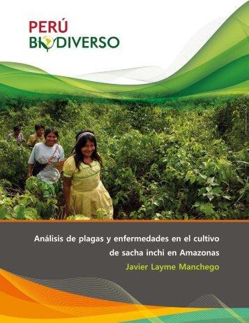 Análisis de plagas y enfermedades en el cultivo de ... - Perúbiodiverso