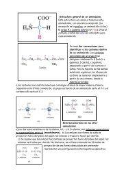 La Transcripción En Eucariótas