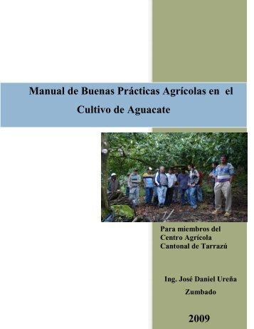 Manual de Buenas Prácticas Agrícolas en el Cultivo de Aguacate