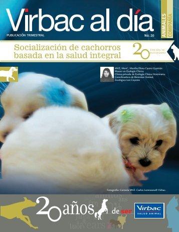 Socialización de cachorros basada en la salud ... - Web Veterinaria