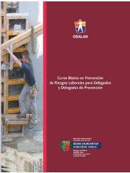 Curso básico en prevención de riesgos laborales para delegados y ...