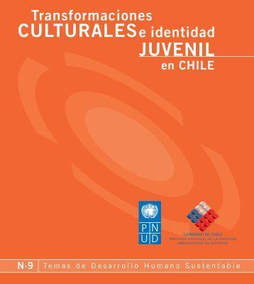 N° 9 Transformaciones Culturales e Identidad Juvenil en Chile