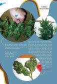 cultivo-urbano@hotmail.com.ar - Haze - Page 5