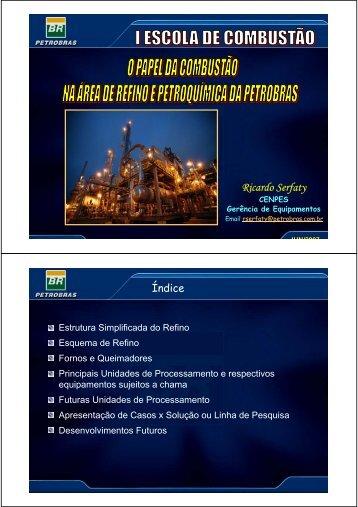 Ricardo Serfaty - Rede Nacional de Combustão