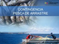 plan-contingencia-pesca-arrastre