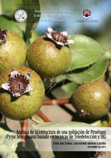 Pyrus bourgaeana - Helvia :: Repositorio Institucional de la ...