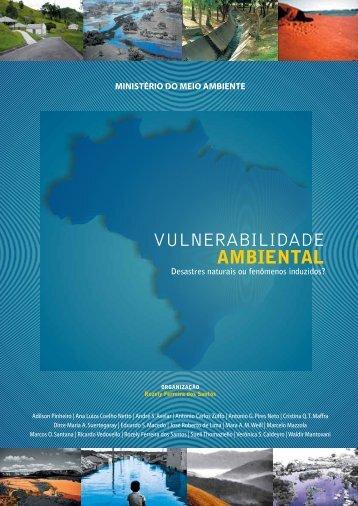 Livro - Vulnerabilidade Ambiental - Inpe