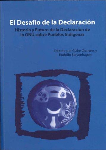 El Desafío de la Declaración. Historia y Futuro de la ... - Servindi