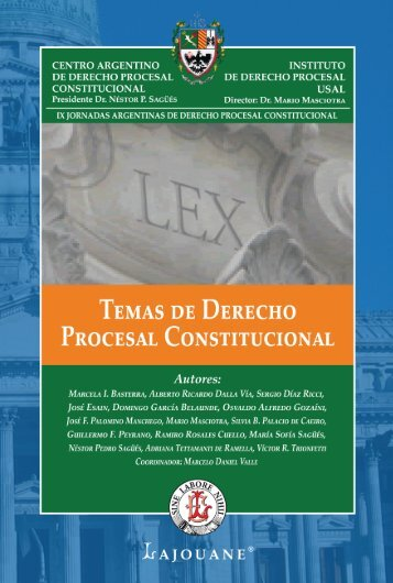 TEMAS DE DERECHO PROCESAL CONSTITUCIONAL - Profesor ...