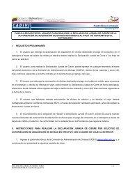 Instructivo Declaracion Jurada de Cierre - Cadivi