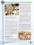 en ed mango - Maryknoll Language Institute - Page 6