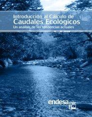 Introducción al Cálculo de Caudales Ecológicos - Endesa..