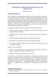 MANEJO DE LA FERTILIZACION DEL AGUACATE (Primera Parte ...