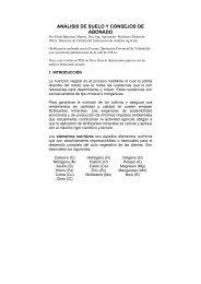 ANÁLISIS DE SUELO Y CONSEJOS DE ABONADO