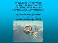 ejemplos de plataformas carbonatadas.pdf - UNAM
