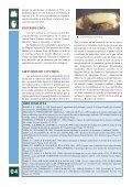 ficha - Junta de Andalucía - Page 4