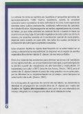 Propagación de la cebolla de rama (Allium fistulosum L.) - Agronet - Page 6