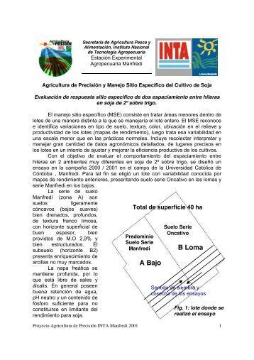 Sitio-Especifico-Soja-Sobre-Segunda-Trigo.pdf - INTA