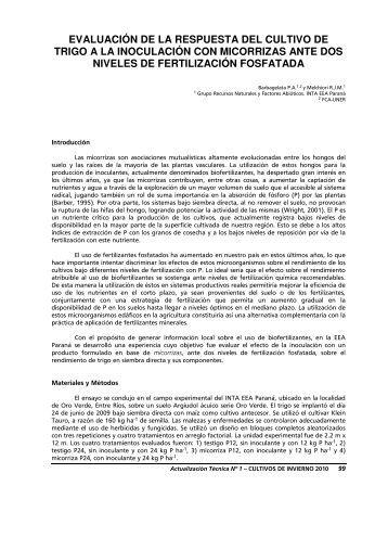 INTA-Evaluación-respuesta-cultivo-trigo-inoculación-micorrizas-dos ...