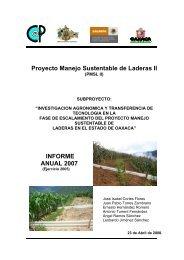 Proyecto Manejo Sustentable de Laderas II - Colegio de ...