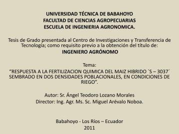 INTRODUCION Y REVISION DE LITERATURA..pdf - Universidad ...
