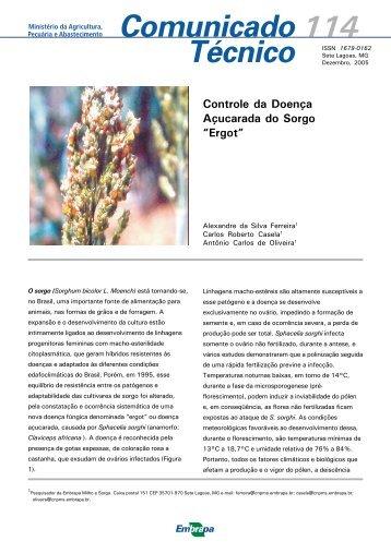 Comunicado 114.p65 - Embrapa Milho e Sorgo