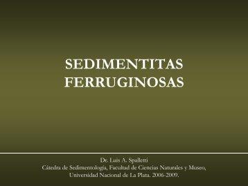 Rocas Ferruginosas - Facultad de Ciencias Naturales y Museo ...