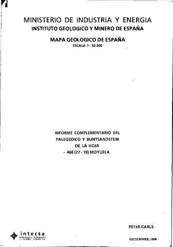 Informe del paleozoico y buntsandstein - Instituto Geológico y ...