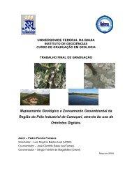 Mapeamento Geológico e Zoneamento Geoambiental da Região do ...